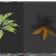 Farn – Pflanze als 3D Modell