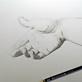 Bleistiftzeichnung: Hand 2