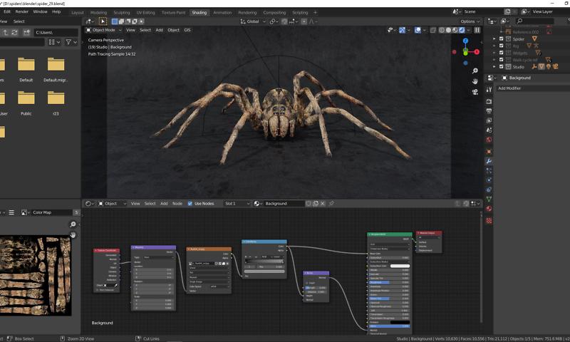 Fashion Grau für die Spinne